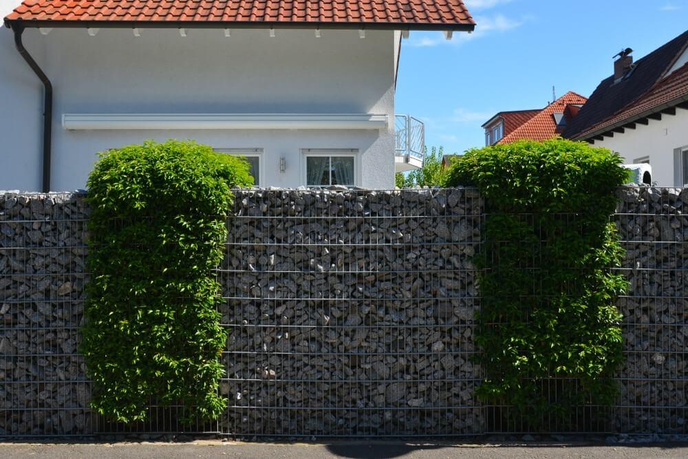 gabioane si plante decorative