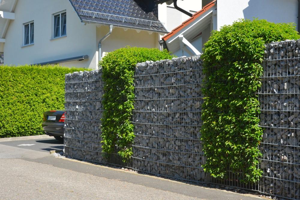 Imprejmuirea casei cu panouri plastifiate zincate si gard natural